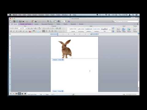 How to Edit a Picture in a Header in Microsoft Word : Microsoft Office Tips