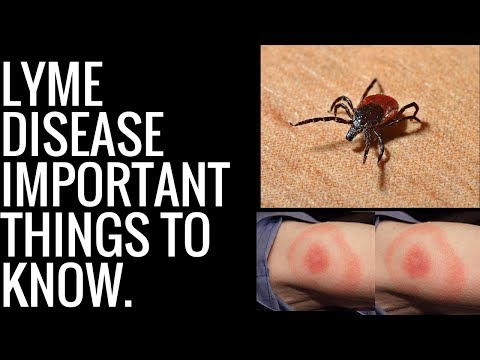 Lyme disease-Important things to know.