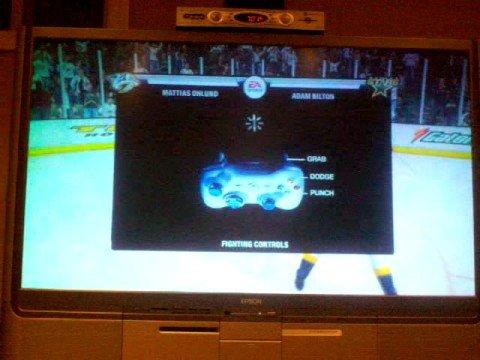 NHL 09 fight