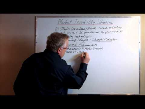 Market Feasibility Study: More Important Than a Business Plan
