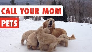 Call Your Mom | Mother