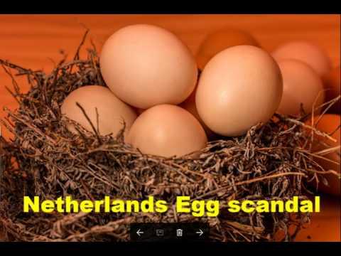 Netherlands Egg scandal widens to UK and France, 7-Aug-2017
