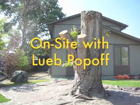 On Site with Lueb Popoff