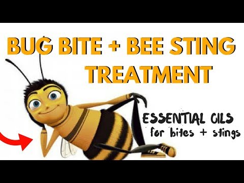 Home Remedies to Relieve Bug Bites & Bee Sting Pain FAST with Natural Essential Oils