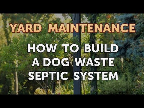 How to Build a Dog Waste Septic System