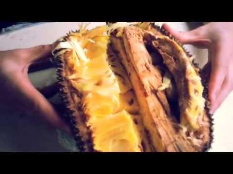 Thai Jackfruit - How to eat? When Ripe? Thailand
