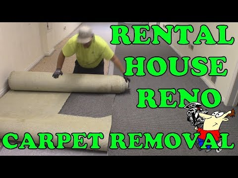 Rental house Project - Carpet removal