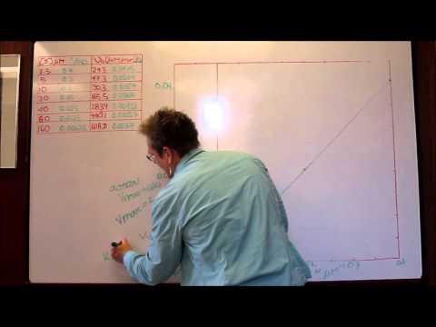 12 - Lineweaver Burk plot - 22.10.13