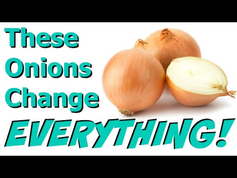 Sunions Taste Test Review | Are They Really Tearless Onions??