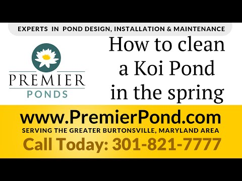 How to clean a Koi Pond in the Spring