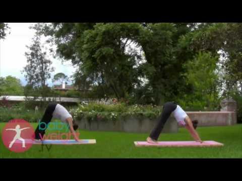 YogaMama Prenatal Beginner Intermediate Preview Spanish