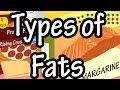 """Fats - Types Of Fats - What Is Saturated Fat - What Is Unsaturated Fat - Omega 3's And Omega 6""""s"""