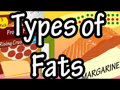 Fats - Types Of Fats - What Is Saturated Fat - What Is Unsaturated Fat - Omega 3's And Omega 6