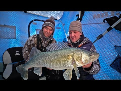 GIANT WALLEYE Ice Fishing In Canada!
