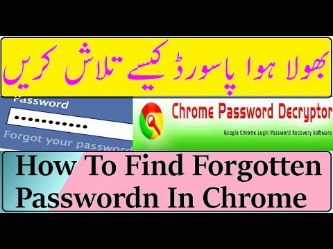 How To find all passwords entered on my computer Urdu | Hindi