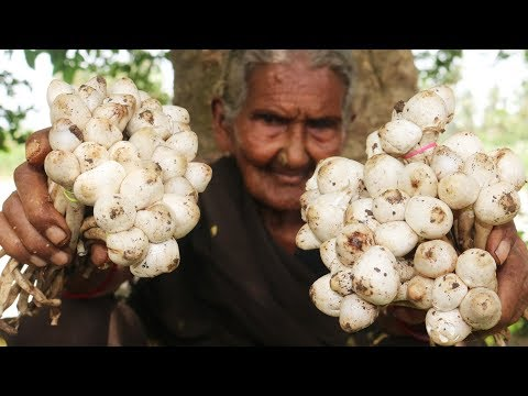 Mushroom Recipe    Traditional Mushroom Curry By Granny Mastanamma
