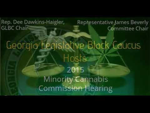 Jeremy Sharpe speaks to the Minority Cannabis Commission No. 10, 2015