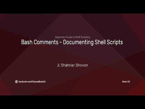 09. Bash Comments - Documenting Shell Scripts