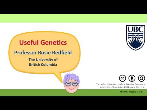11K - Gene editing using CRISPR/Cas9