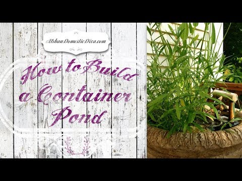 How To Easily Build a Container Pond