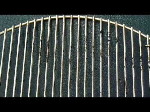 Grill Grate Cleaning
