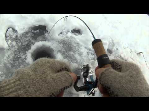 First ice and brook/brown trout fishing 2016