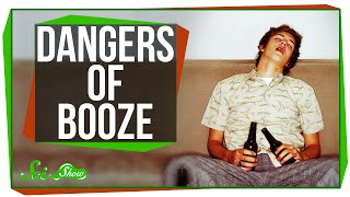 The Science And Dangers Of Booze In Humans