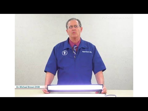 PetSolutions: Coralife Aqualight Double T5 Freshwater Light Fixture