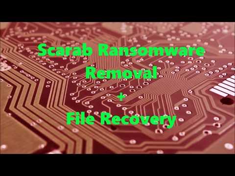 .xtbl Files Virus - Remove Scarab Ransomware + Restore Data