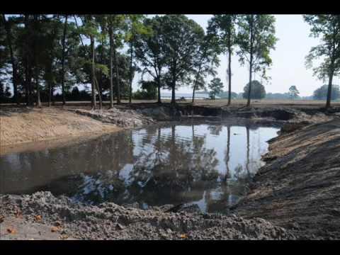 Little farm pond Project