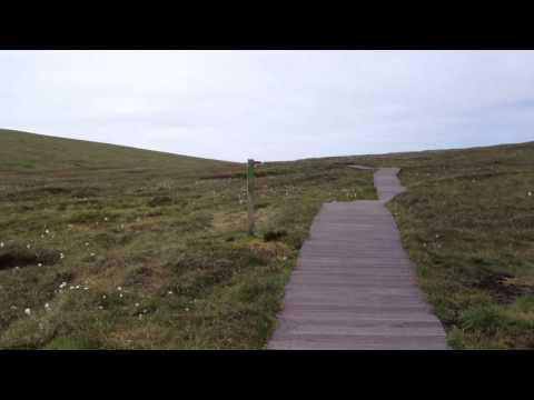 Hermaness Moors, Unst | Shetland (2)