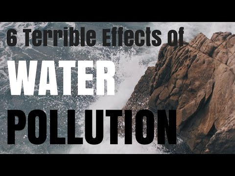 6 Terrible Effects of Water Pollution