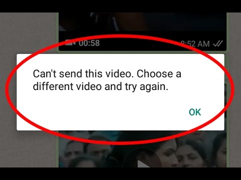 Fix Can't send this video.Choose a different video and try again Error in Whatsapp