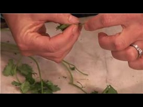 Cooking With Cilantro : How to Use Cilantro Leaves or Stems