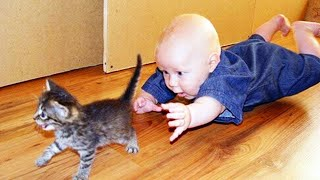 Funniest Baby And Cat - Funny Baby Videos