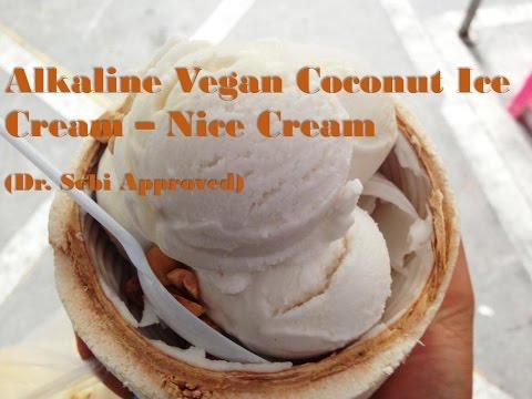 Vegan Coconut Ice Cream - Dr Sebi Alkaline Food
