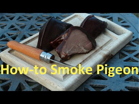 How to Smoke and Cure Woodpigeon