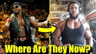 10 Wrestlers  RELEASED By WWE in 2014: Where Are They Now? - The Great Khali & More!