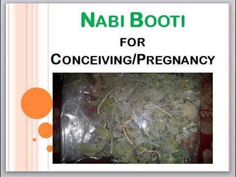 How to use Nabi Booti to conceive? || Nabi Booti vs Maryam Booti