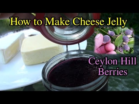 How to Make Cheese Jam or Jelly with Ceylon Hill Gooseberry