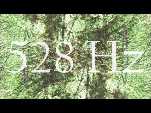 528 Hz Miracle Tone Meditation Music [20 Minutes]