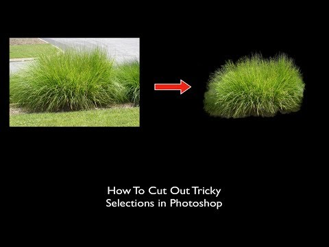 How to Cut Out Tricky Selections in Photoshop CC 2018