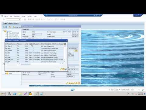 SAP BW 7.5 on HANA Training : Overview of SAP BW and How it works with HANA