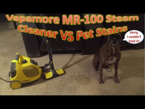 Vapamore MR-100 Steam Cleaner VS Pet Stains