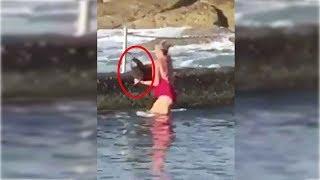 Shark wrangler: Australian woman casually picks up lost shark with bare hands