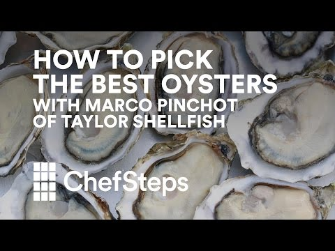 How to Pick the Best Oysters, With Marco Pinchot of Taylor Shellfish