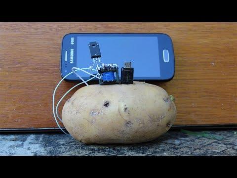 Free Energy Potato Science Experiment