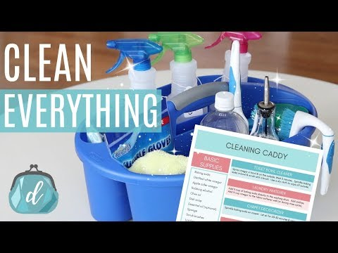 CLEAN YOUR ENTIRE HOUSE WITH DIY CLEANERS! 🍋 What's in my cleaning caddy?