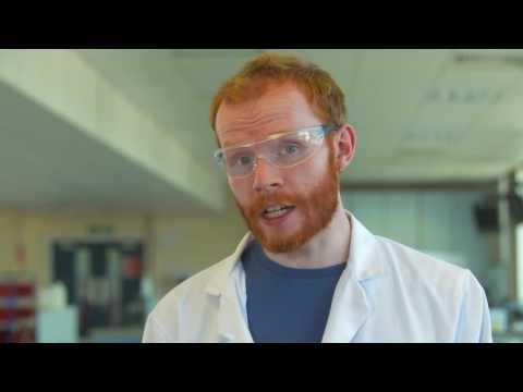 How do you measure the reaction rates of enzymes?