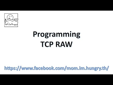 Programming: TCP RAW Technique